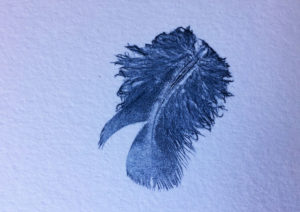 this tiny feather print is about 1.5cm long
