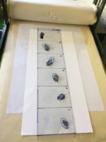 a template on the press with feathers laid on