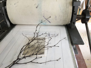 Twig laid over aluminium plate on the press