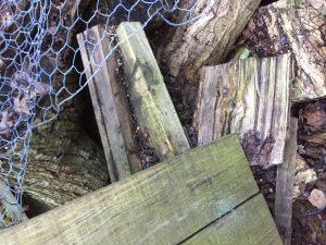 treasure in the junk heap; old pallets