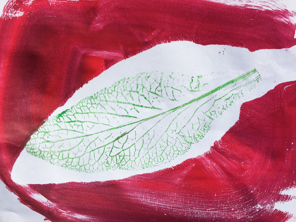 green leaf with red border